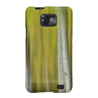 Autumn Aspen Tree Trunks In Their Glory Dreaming Samsung Galaxy SII Cover