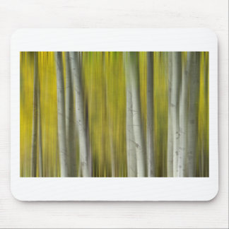 Autumn Aspen Tree Trunks In Their Glory Dreaming Mousepads