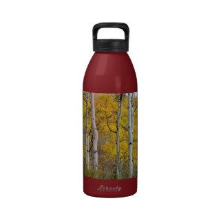 Autumn Aspens Reusable Water Bottle