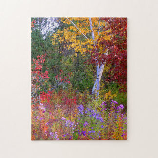 Autumn  Asters and Foliage Jigsaw Puzzle