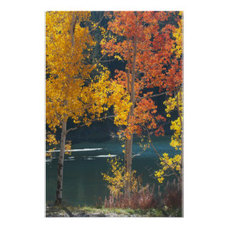 Autumn at Bear Lake Poster