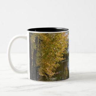 Autumn at Black Dog Lake Two-Tone Coffee Mug
