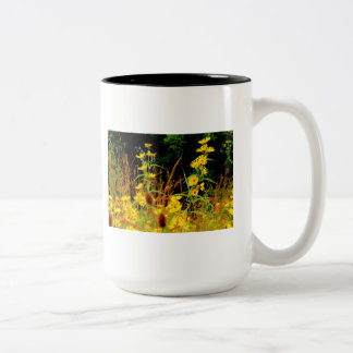 Autumn At Carriage Hill #9 Two-Tone Coffee Mug