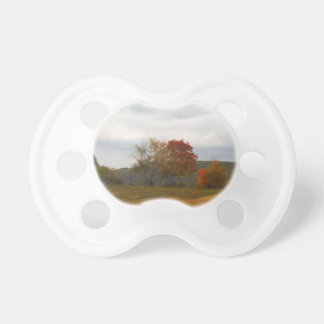 Autumn at Lake Arrowhead. Baby Pacifiers