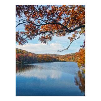 Autumn at Lake Killarney Postcard
