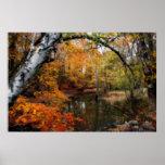 Autumn At Petrifying Springs Print