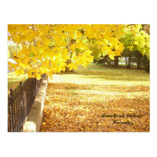 Autumn at The Gallery Postcard