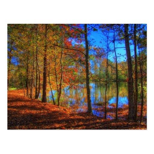 Autumn at the Lake Postcard