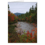 Autumn at the River Cards