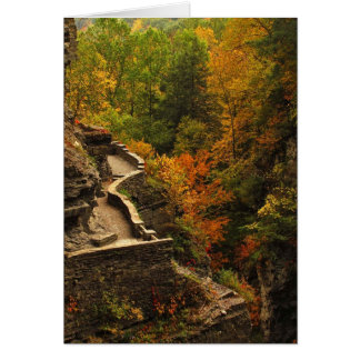 Autumn at Treman State Park Greeting Cards