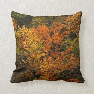Autumn at Treman State Park Throw Pillows
