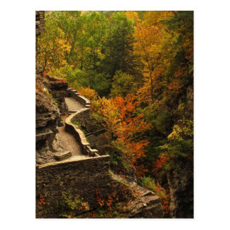 Autumn at Treman State Park Postcard