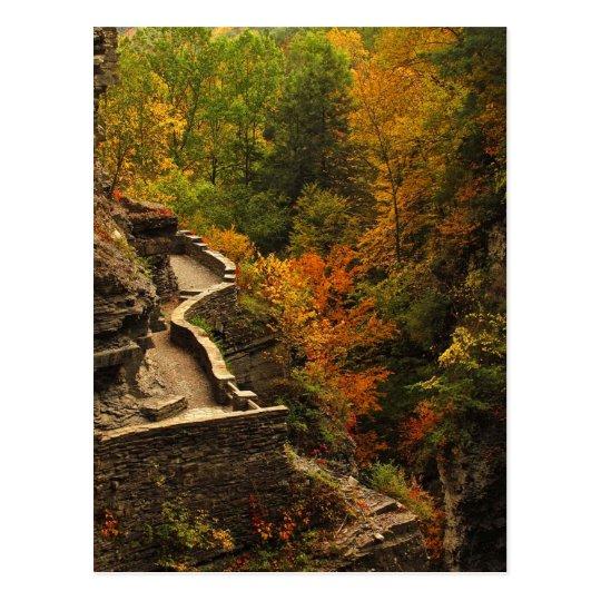 Autumn at Treman State Park Postcard