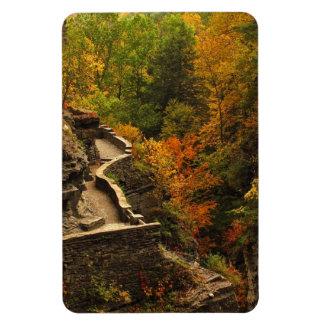 Autumn at Treman State Park Rectangular Magnet