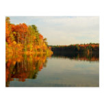 Autumn at Walden Post Cards