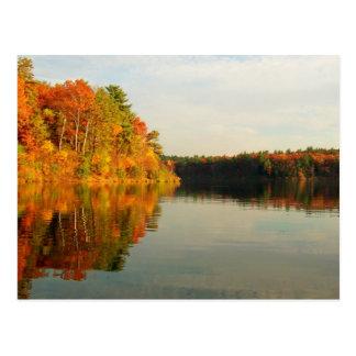 Autumn at Walden Postcard