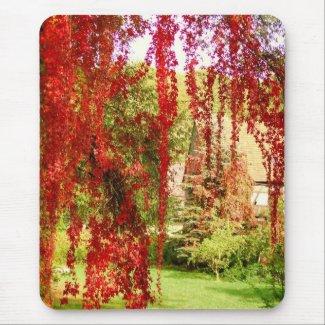 Autumn/Autumn