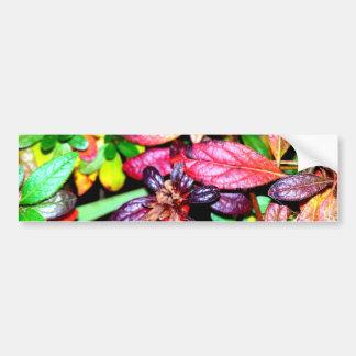 Autumn Azalea Leaves Bumper Sticker