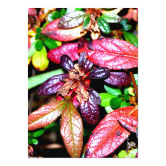 Autumn Azalea Leaves Card