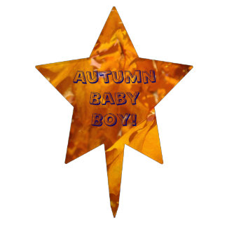 Autumn Baby Boy cake pick toppers Baby Shower