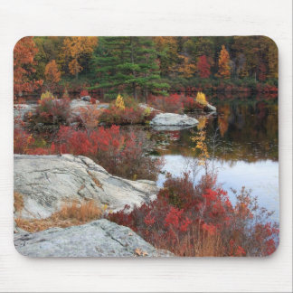 Autumn Bay Mouse Pad
