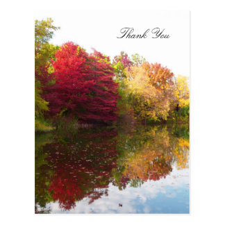 Autumn Beauty Sympathy Thank You Postcard