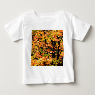 Autumn Beech Tree In Park Portland Oregon Baby T-Shirt