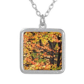 Autumn Beech Tree In Park Portland Oregon Square Pendant Necklace