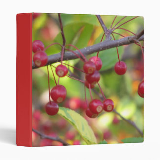 Autumn berries 3 ring binder