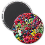Autumn berries  flowers magnets