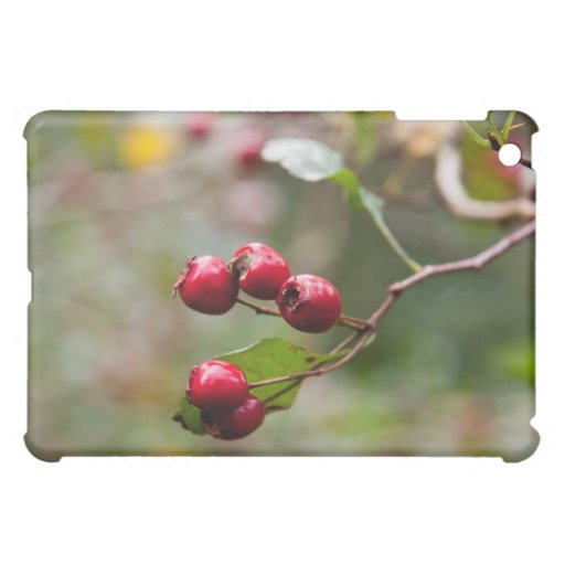 autumn berries  case for the iPad mini