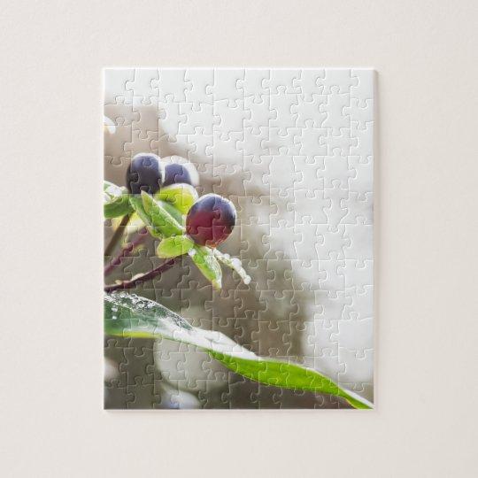 Autumn Berries Jigsaw Puzzle