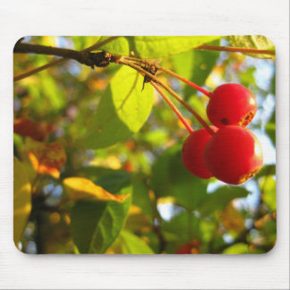 Autumn Berries Mouse Pad