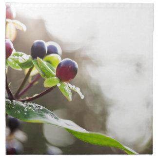 Autumn Berries Cloth Napkin