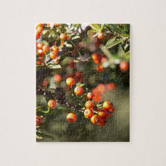 Autumn Berries Puzzle
