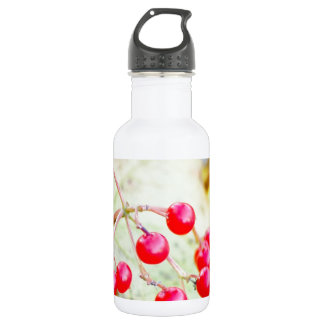 autumn berries stainless steel water bottle