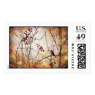 Autumn Berries Stamps