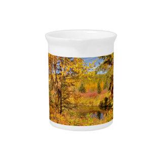 Autumn Birch Tree Beverage Pitcher