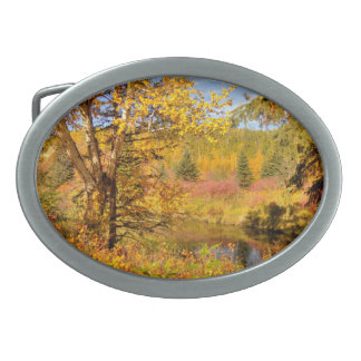 Autumn Birch Tree Oval Belt Buckle