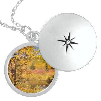 Autumn Birch Tree Round Locket Necklace