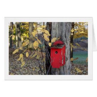 Autumn Birdhouse, Ohio Card