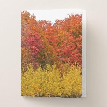 """autumn Blaze"" Fall Colors Pocket-style Folder by whatawonderfulworld at Zazzle"
