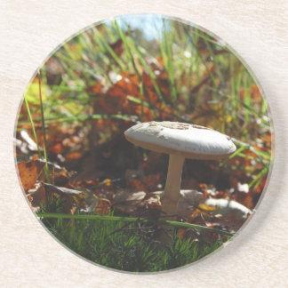 Autumn Bliss - Coaster / Untersetzer