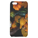 Autumn Bounty Collection Case For iPhone 5C