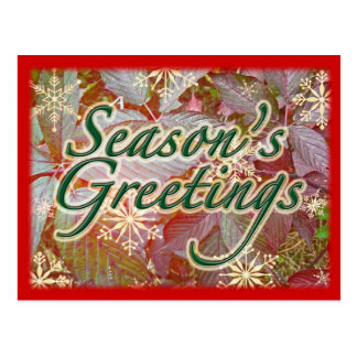 Autumn Brambles Holiday Season Items Postcard