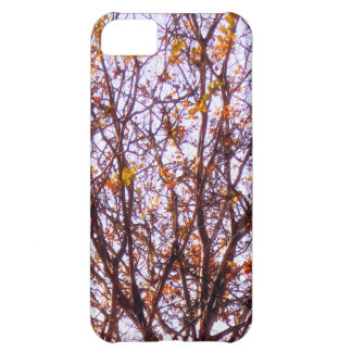 Autumn Branches Cover For iPhone 5C