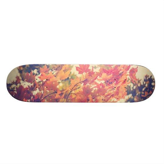 Autumn Breeze Skateboard