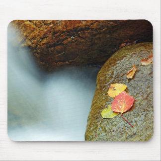 Autumn brook mouse pad