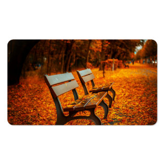 Autumn Double-Sided Standard Business Cards (Pack Of 100)