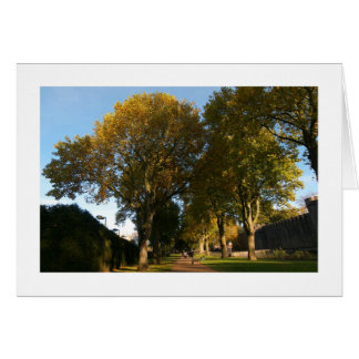 Autumn, Bute Park, Cardiff (Bordered) Greeting Card